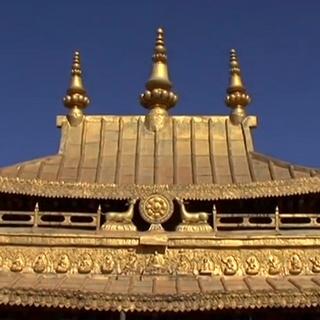 Lhasa (Expoza)